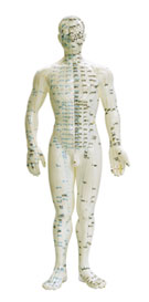 foto-1-acupuntura