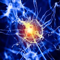 foto-1-neuralterapia-o-terapia-neural