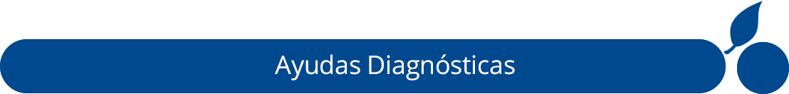 ayuda-diagnostica-consulta-medica-externa-especializada